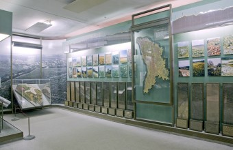 Ilya Rabinovich Exhibition hall 3 of the National Museum of Ethnography and Natural History exhibiting a geological display on the richness and diversity of Moldovan soils