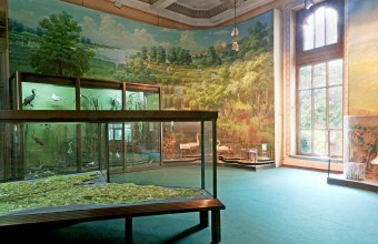 Ilya Rabinovich Exhibition hall 2 of the National Museum of Ethnography and Natural History A mural portraying the Prut River forms thebackdrop of a three-dimensional topographical exhibition