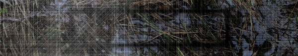 Kurt Hentschläger, MEASURE, panoramic audiovisual installation, 2014, video still. Image © Kurt Hentschläger. Used here by kind permission from the artist. All rights reserved.