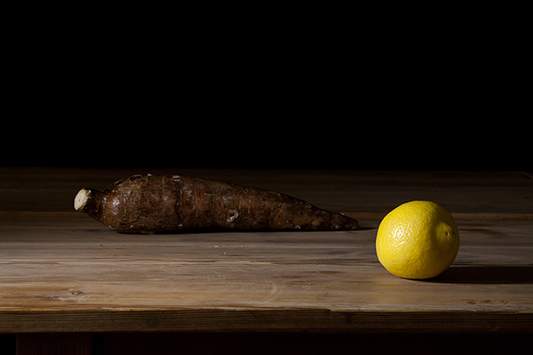 Vanessa Colareta - Still Life with Yucca and Lemon, 100 x 120 cm, 2011. Inkjet print. Ed.: 5 + 2 A.P. Image © Vanessa Colareta. Used here by kind permission from the artist and Nunc Contemporary. All rights reserved.