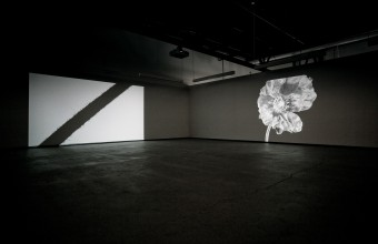 Pascal Grandmaison One Eye Open, installation view
