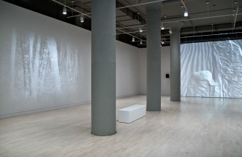 Nadia Hironaka & Matthew Suib The Fall, installation view as part of the Whiteout exhibition