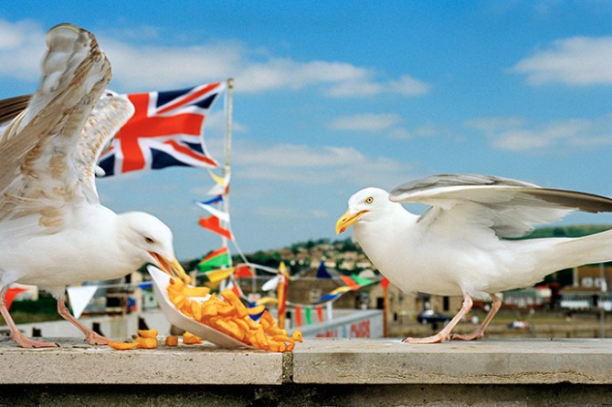 From West Bay, Dorset, England, 1996 © Martin Parr / Magnum Photos. Used here by kind permission from Fotografiska. All rights reserved.