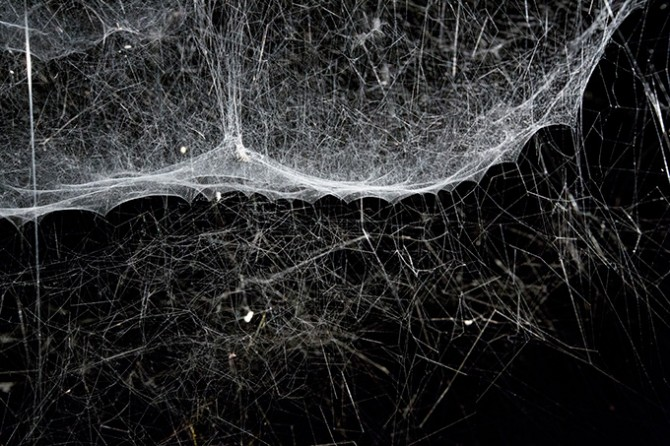 Tomás Saraceno. Image © ZKM | Center for Art and Media, 2015. Used here by kind permission from ZKM | Center for Art and Media. All rights reserved.