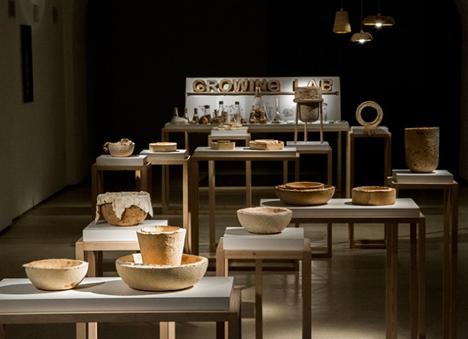 The Growing Lab, Mycelia, mycelium vessels overview (future of plastic). Officina Corpuscoli / Maurizio Montalti. Image courtesy of Creative Industries Fund NL. Used here by kind permission. All rights reserved.