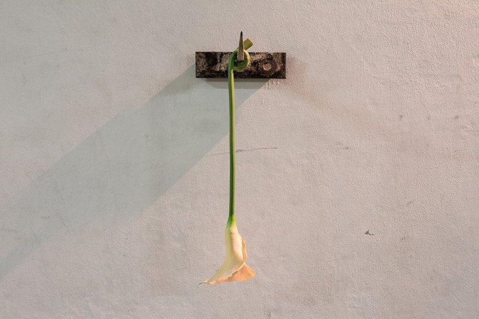 Dimitris Merantzas, Melancholia, 2010. Meat hook, synthetic Lilly (edition of 3), 65 x 25 x 28 cm. Photography: Antonis Minas, Courtesy the Office gallery. All rights reserved.