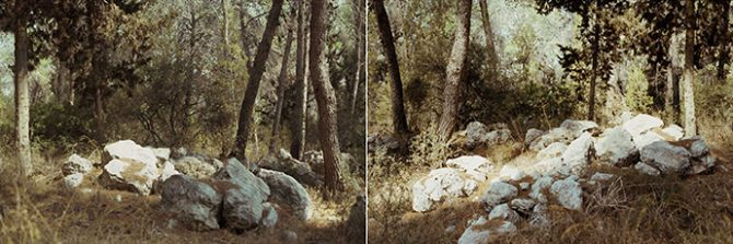 Rafael Y. Herman, imaginarium silvarum, 2015. Chromogenic print, diptych, 180 x 540 cm / 71 x 212 inches. Image courtesy of the artist. Used here by kind permission. All rights reserved.